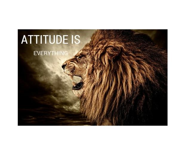 ATTITUDE IS